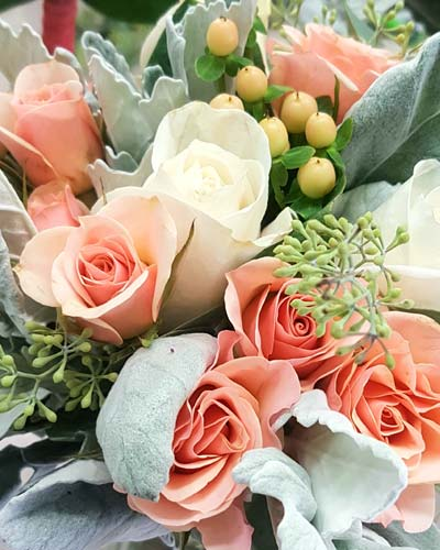 Coral Roses Floral